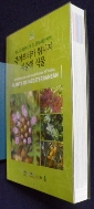 북아프리카 튀니지 지중해 식물  9788997450497 / 사진의 제품  / 상현서림  / :☞ 서고위치:XG 4  * [구매하시면 품절로 표기됩니다]