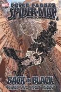 피터 파커 스파이더맨 : 백 인 블랙만화/큰책)