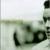 Adam Cohen / Adam Cohen (수입)