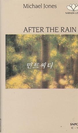 [카세트 테이프] Michael Jones - After The Rain
