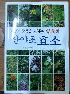 고혈압,중풍을 고치는 발효액 산야초 효소 / 행복을만드는세상 / 2013.05
