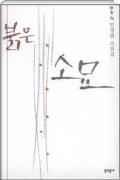 붉은 소묘 - 청동거울을 보여주마에 이은 민경현의 두번째 소설집. 초판