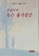 사랑이여 녹슨 흉기같은 - 이용주 장편 소설 1판 1쇄