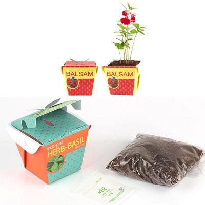 홈가드닝 봉선화씨앗 화분 흙 세트