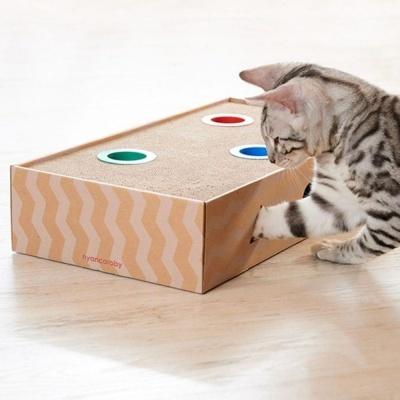 고양이 장난감 플레이 박스 사냥 놀이 분리 불안 토이