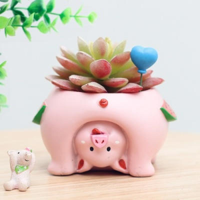 ROOGO 루고 다육이 화분 거꾸로 보는 세계 돼지