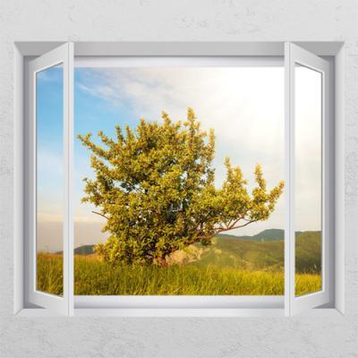 ch215-나무한그루_창문그림액자