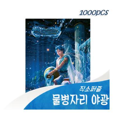 [비앤비퍼즐] 1000PCS 직소 물병자리 03-601 야광