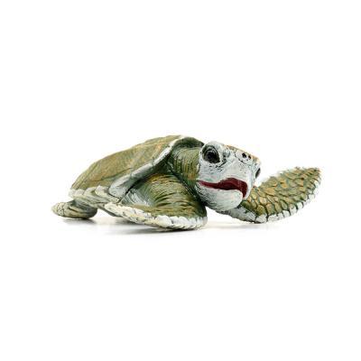 267429 바다거북 Kemp`s Ridley Sea Turtle Baby