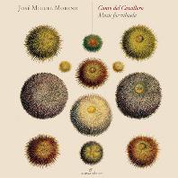CANTO DEL CAVALLERO: MUSIC FOR VIHUELA/ JOSE MIGUEL MORENO [비우엘라 작품집]