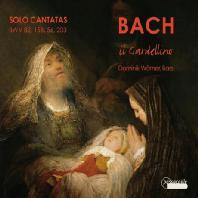 SOLO CANTATAS/ IL GARDELLINO, DOMINIK WORNER