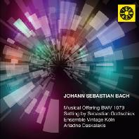 MUSICAL OFFERING BWV 1079: SETTING BY SEBASTIAN GOTTSCHICK/ ENSEMBLE VINTAGE KOLN [바흐: 음악의 헌정 - 앙상블 빈티지 쾰른]