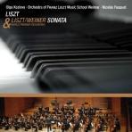 PIANO SONATA & ARR. FOR ORCHESTRA/ OLGA KOZLOVA, NICOLAS PASQUET [리스트 피아노소나타: 피아노버전 & 오케스트라 버전]
