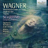 WESENDONCK-LIEDER & LANGUIRE A PALERMO/ SARA MINGARDO, MARCO ANGIUS [바그너: 베젠동크 가곡집(헨체 편곡), 시아리노: 팔레르모에서의 번민]