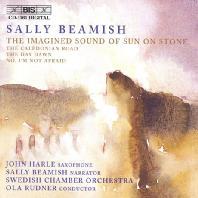 THE IMAGINED SOUND OF SUN OF STONE/ JOHN HARLE, OLA RUDNER