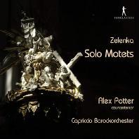 SOLO MOTETS/ ALEX POTTER, DOMINIK KIEFER