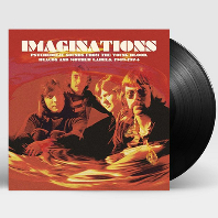 IMAGINATIONS: PSYCHEDELIC SOUNDS FROM THE YOUNG BLOOD BEACON & MOTHER LABEL 1969-1974 [LP]