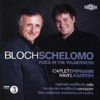 SCHELOMO: VOICE IN THE WILDERNESS/ RAPHAEL WALLFISCH, BENJAMIN WALLFISCH [블로흐: 셀로모]