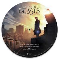 """FANTASTIC BEASTS AND WHERE TO FIND THEM [12"""" SINGLE PICTURE LP] [신비한 동물사전]"""
