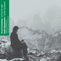 CHAMBER SYMPHONY & TRANSFIGURED NIGHT/ ADRIAN SUNSHINE [쇤베르크: 정화된 밤 & 쇼스타코비치: 실내교향곡]