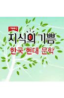 EBS 지식의 기쁨: 한국 현대 문학 [주문제작상품]