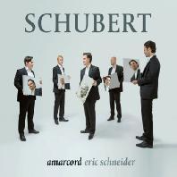 SCHUBERT: CHORAL WORKS/ AMARCORD, ERIC SCHNEIDER [슈베르트: 합창 작품집 - 앙상블 아마코드]
