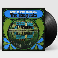 WOULD YOU BELIEVE! [45RPM LP] [한정반]