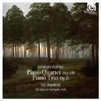 PIANO QUARTET OP.60 & TRIO OP.8/ TRIO WANDERER, CHRISTOPHE GAUGUE [브람스: 피아노 사중주 & 트리오 - 반더러 트리오 & 크리스토프 고그]