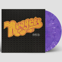 NUGGETS: HALLUCINATIONS PSYCHEDELIC POP NUGGETS FROM THE WEA VAULTS [PURPLE MARBLE COLOR] [180G LP] [한정반]