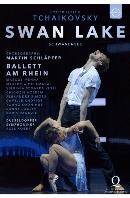 SWAN LAKE/ MARTIN SCHLAPFER [발레 암 라인의 <백조의 호수>| 안무 슐랩퍼>
