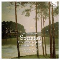 SONATAS FOR CLARINET & PIANO/ LORENZO COPPOLA, ANDREAS STAIER [브람스: 클라리넷 소나타 & 피아노 소품]