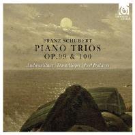 PIANO TRIOS OP.99 & 100/ ANDREAS STAIER, DANIEL SEPEC, ROEL DIELTIENS [슈베르트: 피아노 트리오]